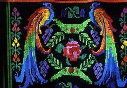 Le quetzal dans faune circuits_guatemala_honduras_quetzal