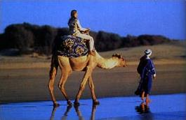 http://www.magiclub.com/magiclub/visuals/maroc_agadir_gf.jpg